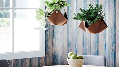 DIY faux leather pot plant hangers