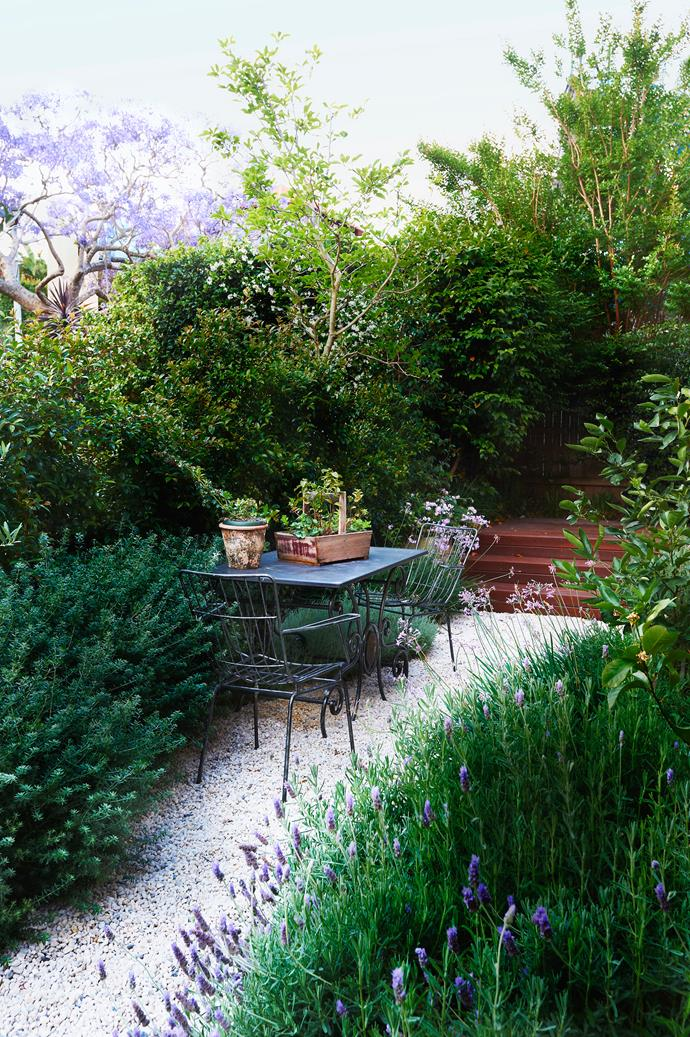"Mass planting of textured mounding plants gives the garden a feeling of abundance. ""It's an informal garden with a focus on form and colour,"" says Hugh, who designed the garden in conjunction with [Good Manors Pools + Gardens](http://www.goodmanors.com.au/?utm_campaign=supplier/