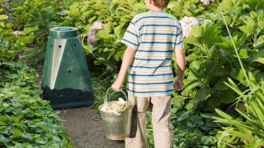 How to start composting