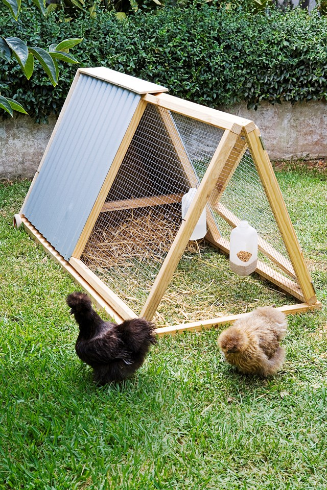 A simple A-frame coop is great for small spaces and those who want to try owning chooks.