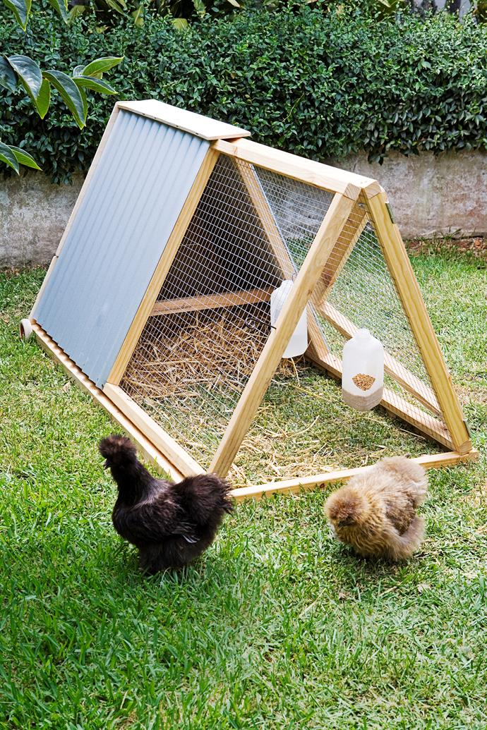 This simple A-frame coop is great for small spaces and those who want to try owning chooks.