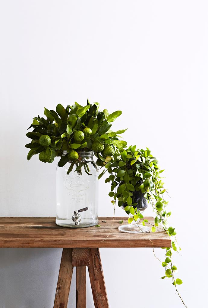 """""""Mix cut stems and living plants in unexpected vessels for invigorating displays,"""" says Fleur."""