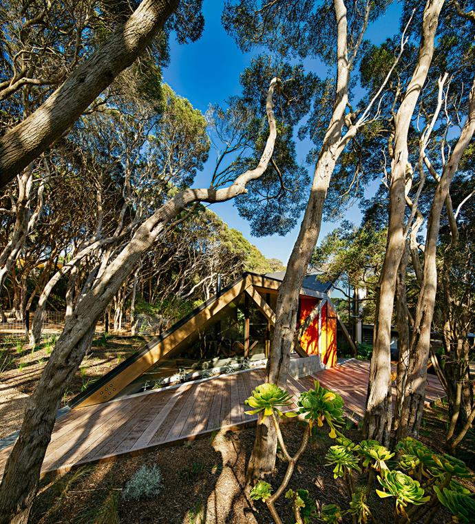 "[Maddison Architects](http://www.maddisonarchitects.com.au/|target=""_blank"") designed this sharply angled and luxuriously appointed cabin in Victoria's Mornington Peninsula. *Photo: William Watt*"