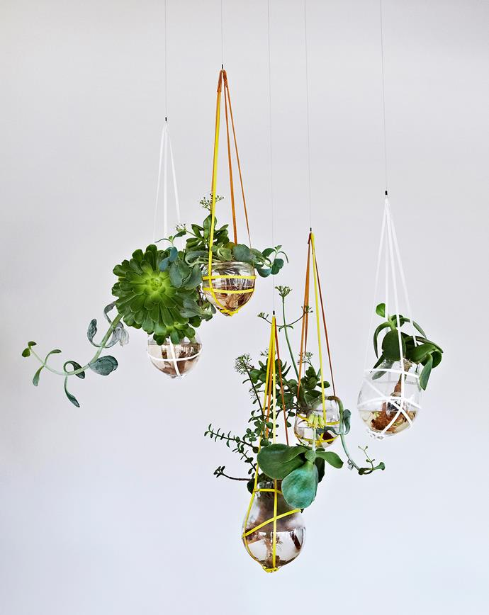 """""""Harness the natural sculptural forms of plants to create artistic statements that breathe life into a space,"""" says Dunnielle Mina, plant sculptor at Botanical Installations."""