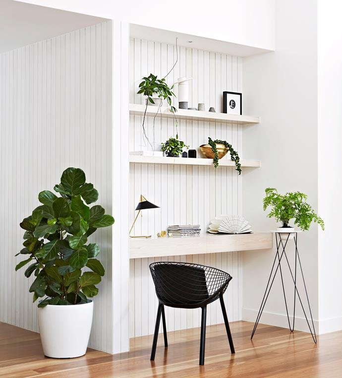"""""""Living greenery creates a sense of calm in a space. Choose vessels that highlight the unique plant forms and complement your materials palette,"""" say interior designers [Mardi Doherty](http://dohertydesignstudio.com.au/?utm_campaign=supplier/