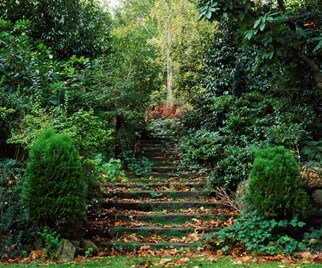 Edna Walling's landscaping