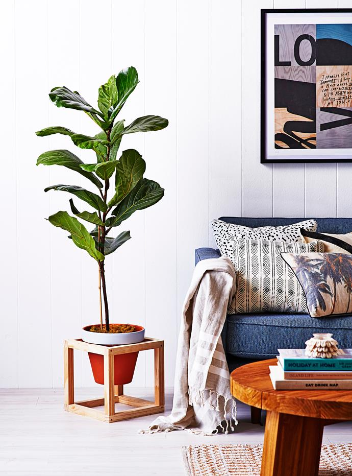 """Give your house plant a bit of an edge with this [DIY pot plant stand](http://www.homestolove.com.au/diy-pot-plant-stand-3299