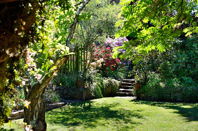 The bottom lawn is wondrous in spring and summer, with rhododendrons providing recurring splashes of purple and red throughout.