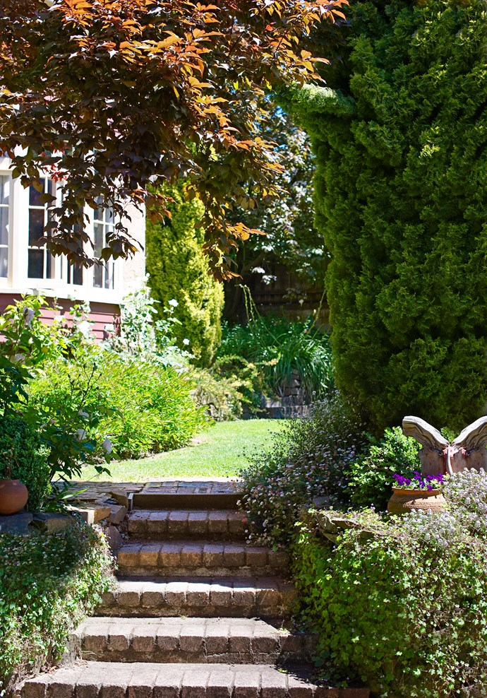 """The steps to the front lawn at the beautiful Launceston, Tasmania property owned by Howard and Melissa Smith are flanked by [pretty perennials](http://www.homestolove.com.au/spring-gardening-planting-perennials-2079