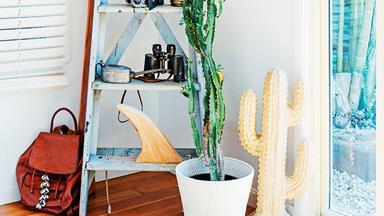 Top 10: the best indoor plants for Aussie homes