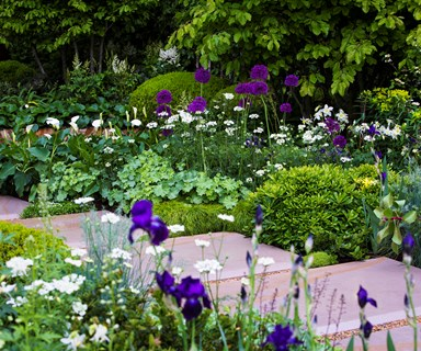 What to do in the garden this spring