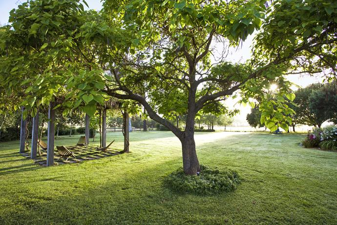 In central Victoria, near the township of Alexandra, lies Heatherly, a picturesque property where past and present  – and the handiwork of two generations of gardeners – blend superbly.