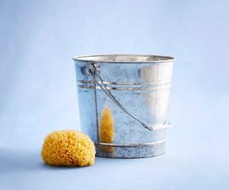bucket and sponge