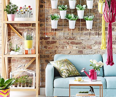 3 ways with indoor plants
