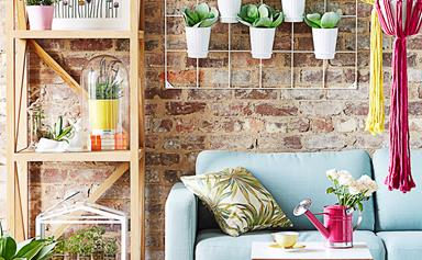 3 creative indoor plant display ideas