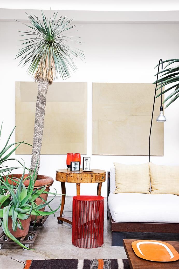 Mature plants suit the proportions of the large living room and add life to the predominantly white space.