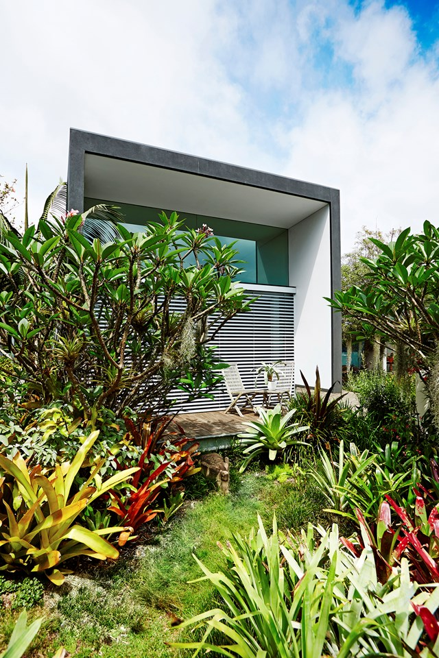 "Horticulturist and founder of The Greenwell Company, Mark Paul, created his [sustainable Sydney garden](https://www.homestolove.com.au/a-sustainable-sydney-garden-4161|target=""_blank"") out of a sandstone base, using zero soil. Fascinatingly, most of the plants grow in a 200mm-thick, soil-less growing medium patented by Mark consisting of ""waste material that would otherwise be destined for landfill."""