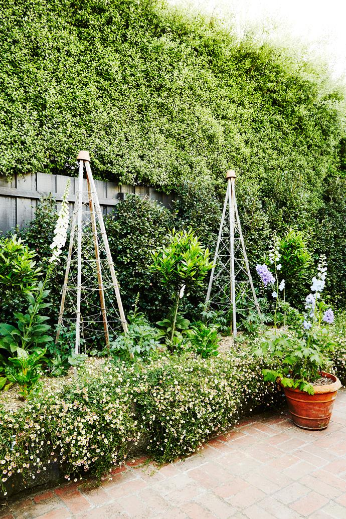 "With [cirtus trees](http://www.homestolove.com.au/what-to-consider-when-choosing-a-citrus-tree-3662|target=""_blank""), potted herbs and strawberries, the courtyard is as productive as it is beautiful."