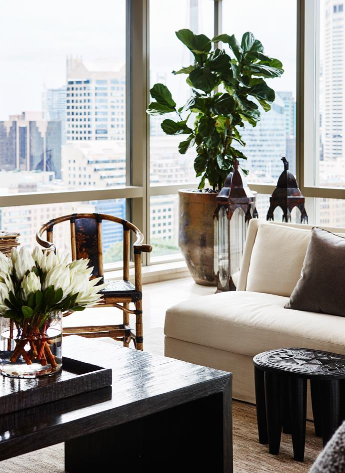 """A fiddle-leaf fig in a wood-fired pot from [Garden Life](http://www.gardenlife.com.au/