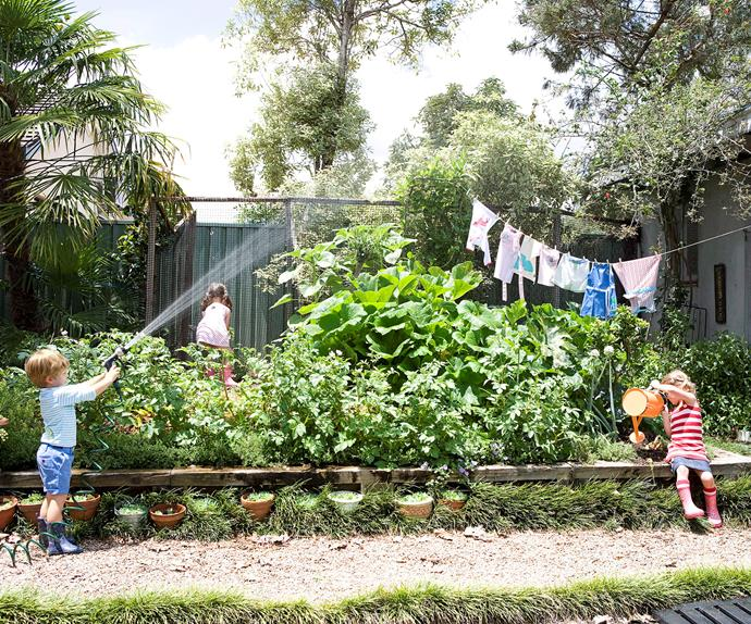 hosing the garden