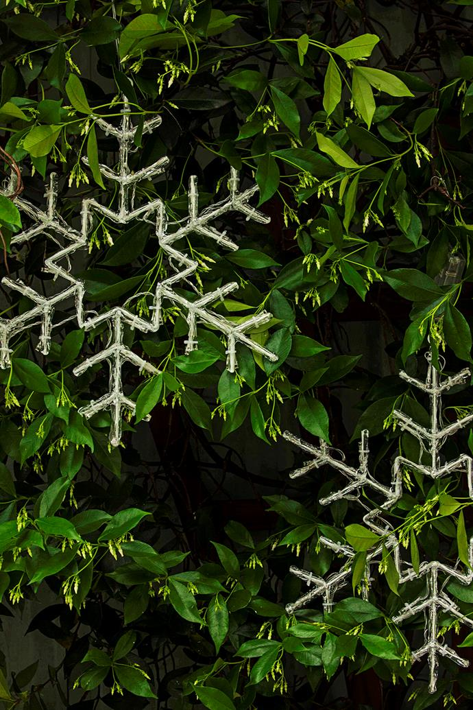 Hang outdoor Christmas decorations in shrubs, trees and hedges.