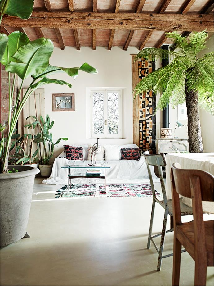 A tall bird-of-paradise in an oversized pot and a huge tree fern frame the living zone, separating it from the dining area.