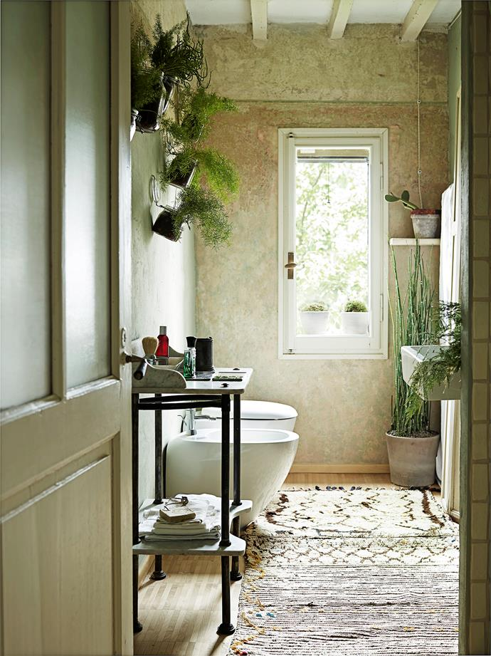 Moroccan mats cover the bathroom floor while the wall is adorned with groundling plants in glass jars. A tall potted succulent brings energy to a corner of the room.