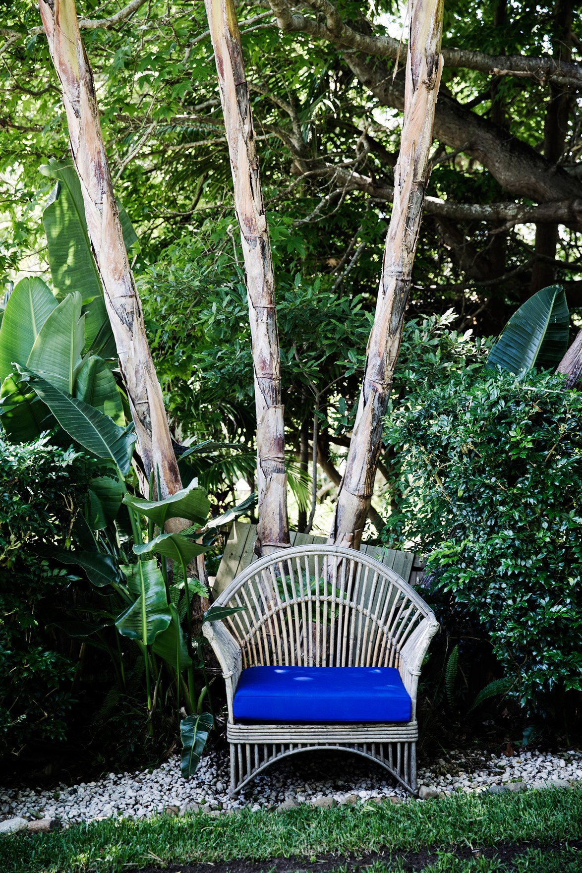 Creating an outdoor escape doesn't always have to cost a fortune. Take this second-hand wicker chair. Upcycled with an upholstered blue cushion, it's fit for a [rustic beachside garden](http://www.homestolove.com.au/a-rustic-beachside-garden-4381) on Sydney's Northern Beaches. *homes+*