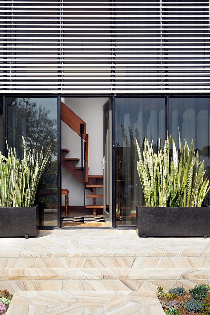 The original house was painted a rust colour. It was repainted in Dulux Hildegard, adding external aluminium venetians to shade the double-height, north-facing glass entrance wall. Sandstone steps and sculptural plants further soften the facade.