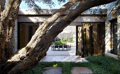 A home built around nature