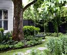 5 ways to protect your garden from the heat