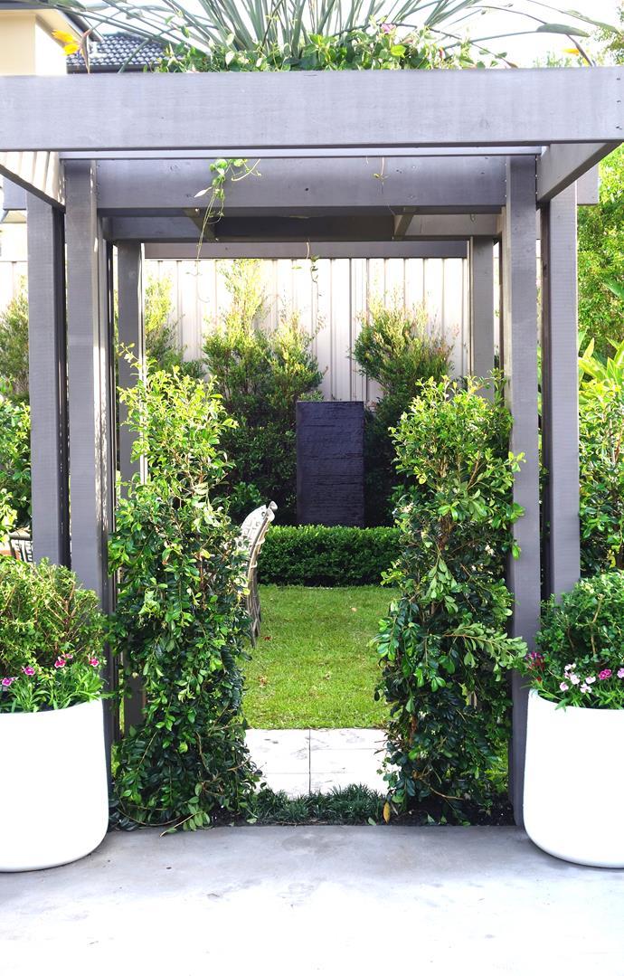 Symmetrical pots and plantings make a formal entrance to Kerry's secret garden.