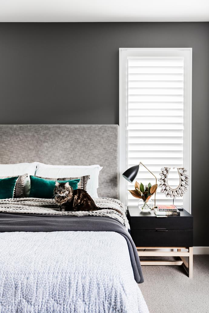 Squeaks, a long-haired tabby, presides over this serene space. Custom bedhead and cushions by [Louise Walsh Interior Design](http://www.louisewalsh.com.au/).