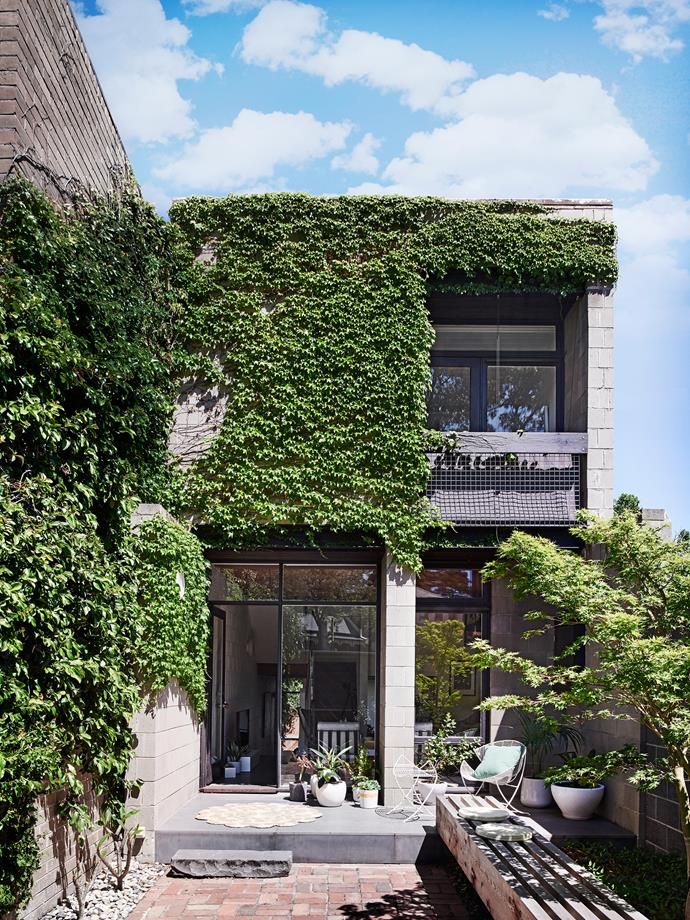 Boston ivy and other creepers drape over the facade of this architect-designed townhouse.