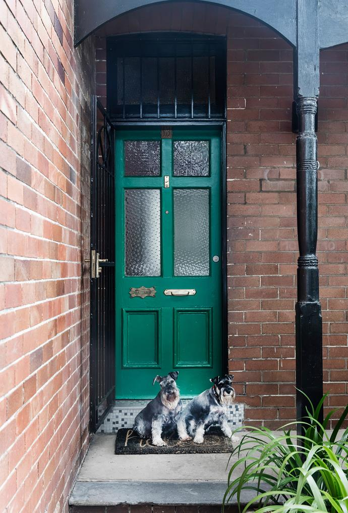 The front door, painted Taubmans Boston Ivy, offers the merest hint of the excitement beyond.