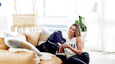 Real Pets: Meet Simone Haag's Great Dane, Tank