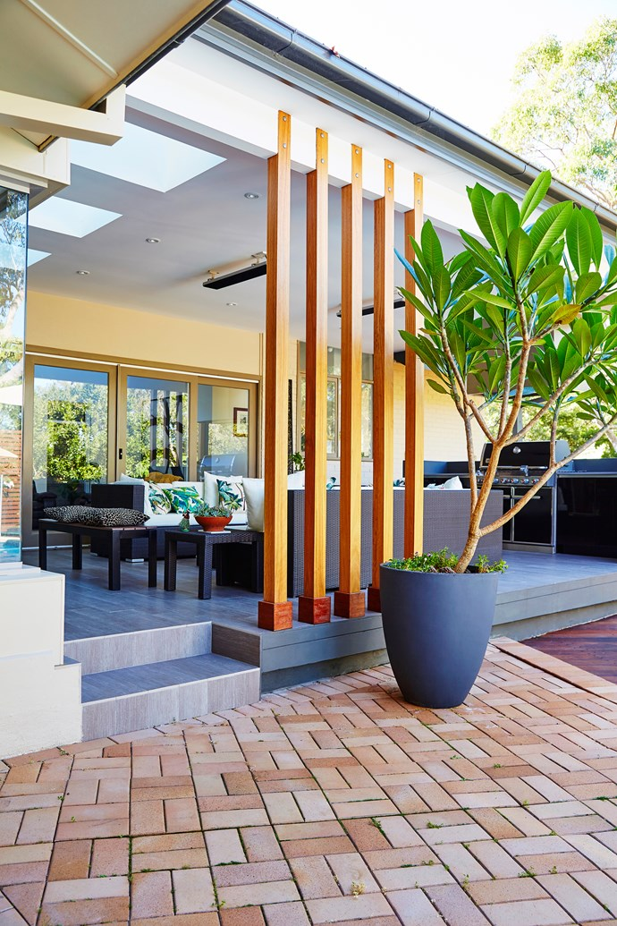 The oversized potted plant adds curves and interest to an otherwise geometric space.