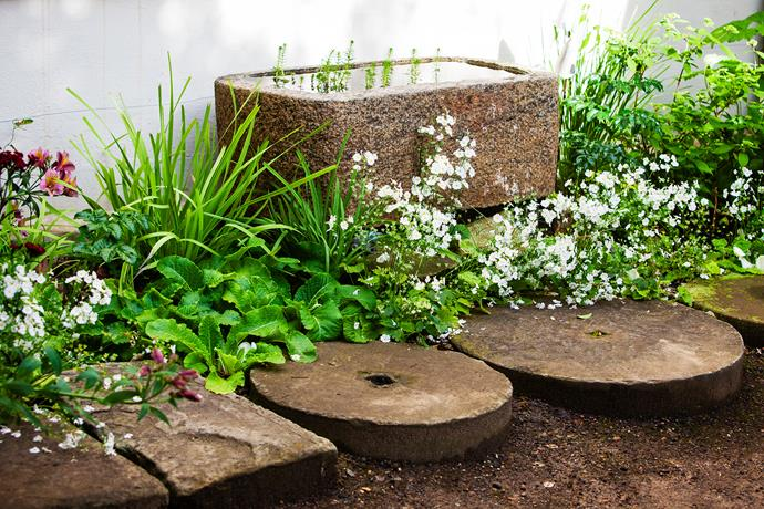 A stone trough is the centrepiece of one of Judy's 'picture corners'.
