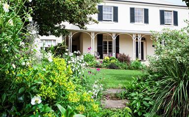 A lush and layered Launceston garden