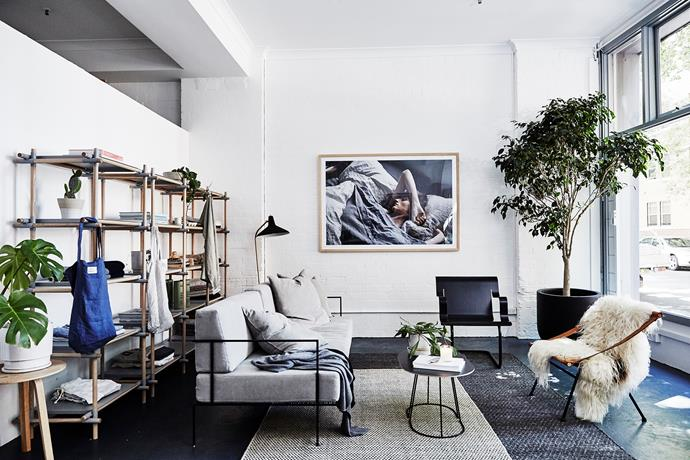 The living area in the studio features an MCM House sofa, Menu shelving and coffee table, a black Artek chair from Anibou, a vintage cane chair from Grandfathers Axe and a potted tree from The Plant Room.