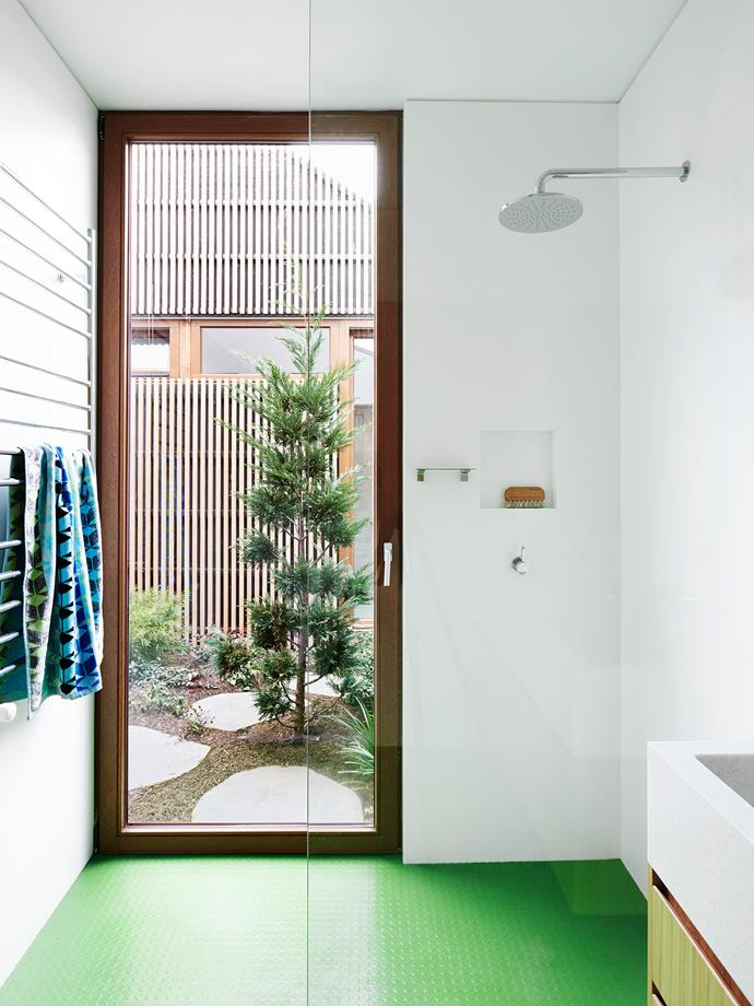 The private block allowed for timber-framed glass external doors. [Landscape designer Kate Seddon](http://ksldesign.com.au/) then created a series of vignettes to be enjoyed from inside. Here, a *Cupressocyparis leylandii* 'Leighton Green' has been cloud-pruned to a Japanese sensibility.
