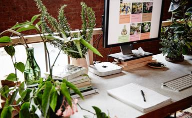 10 best indoor plants for your home office