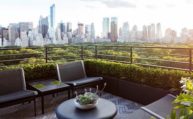 Rooftop garden project in New York City