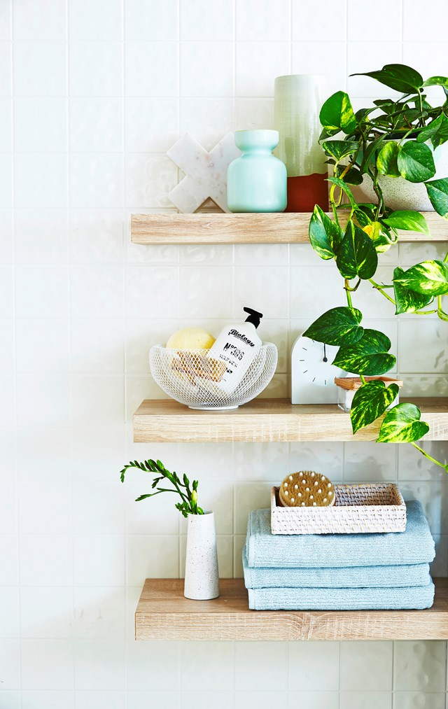 Indoor plants will freshen up your bathroom instantly!