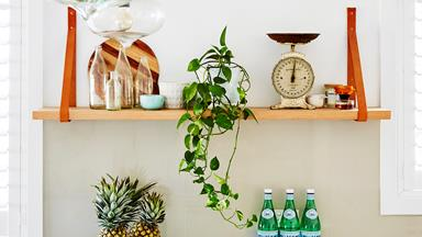 8 easy ways to be greener at home