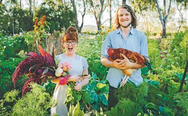 Grown & Gathered: How to start a backyard farm