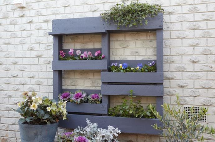 "[You can find step-by-step images for this project here >](https://www.bunnings.com.au/diy-advice/garden/planters/diy-pallet-vertical-garden|target=""_blank""
