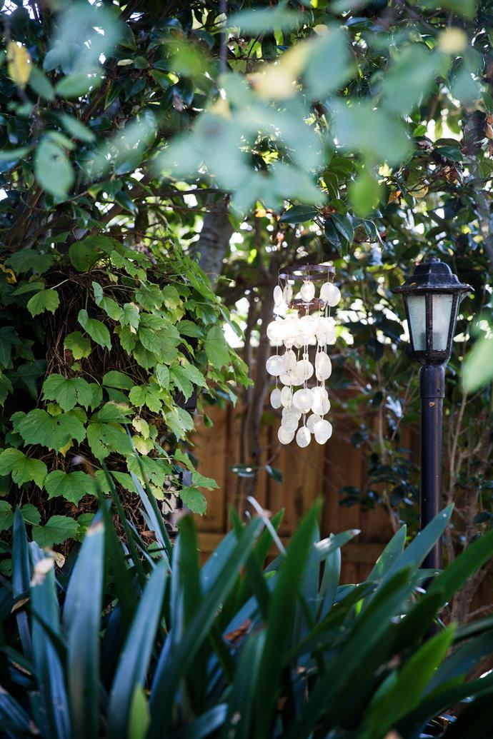 A Virginia creeper adds to the lush green display. Jane found the pretty white windchimes in a Balinese shop.