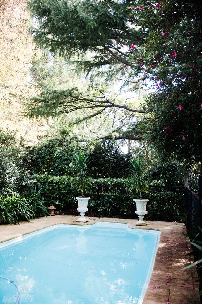 Unusually, the pool is set in the front garden, as the block is very narrow at the rear. The back is used mostly in winter, as it gets a lot of sun.