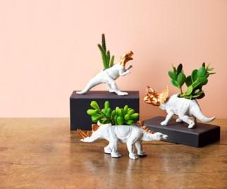 dinosaur succulent planters